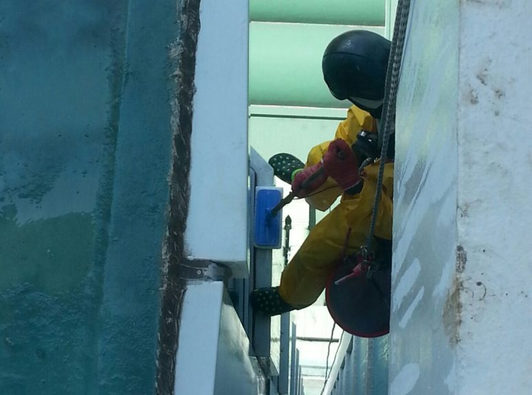 050816 00 Penil & glass cleaning (3)